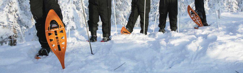 lapponia-escursione-con-le-racchette-da-neve
