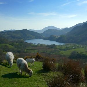 Snowdonia National Park – Galles
