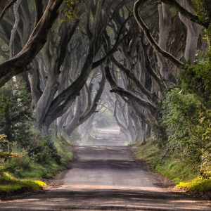 Le due Irlande